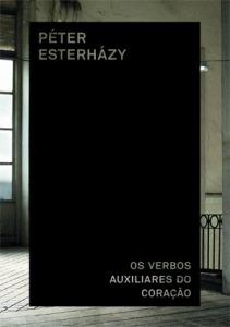 verbos-auxiliares3